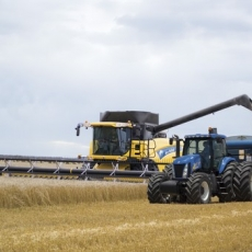 New Holland CX8000 Elevation Combines: The Cleanest Grain Sample from the World�s Most Powerful Conventional Combine